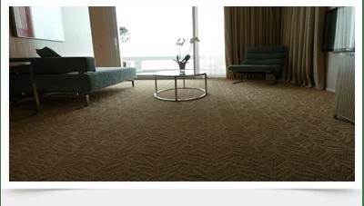 Galerie image nettoyage moquette et tapis for Nettoyage moquette